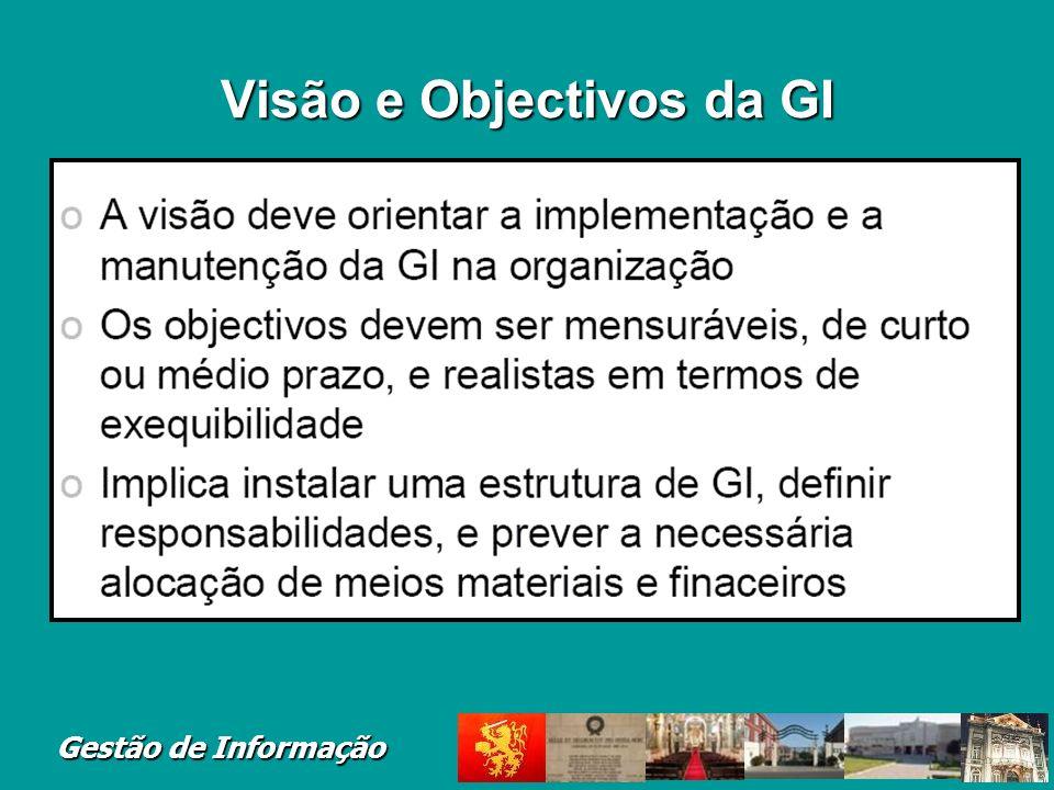 Visão e Objectivos da GI