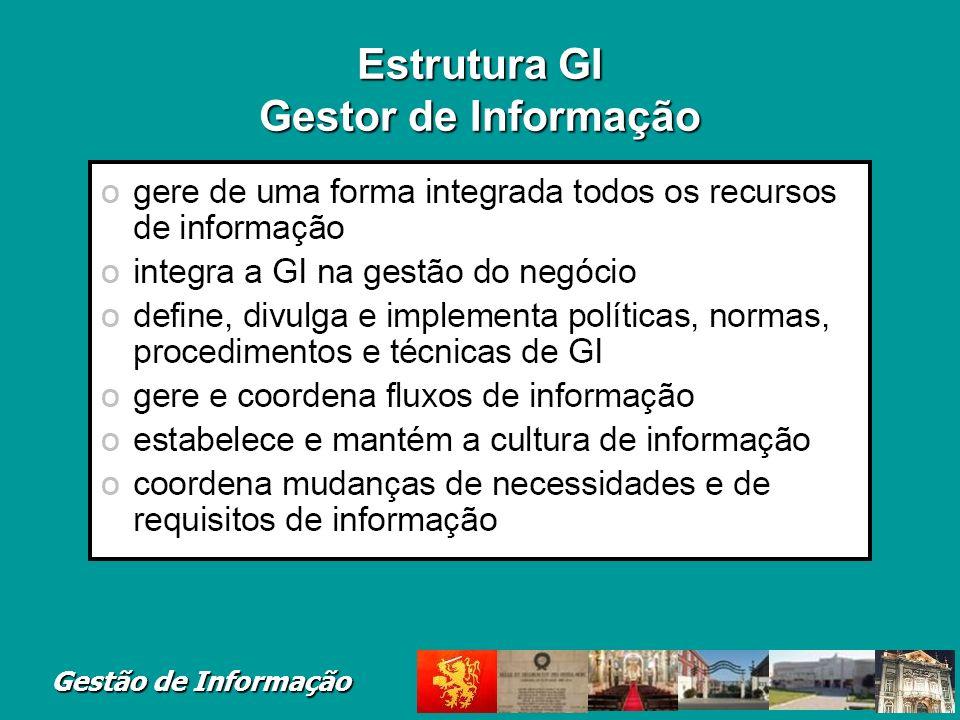 Estrutura GI Gestor de Informação