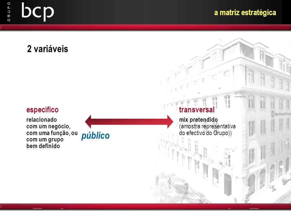 2 variáveis público a matriz estratégica específico transversal