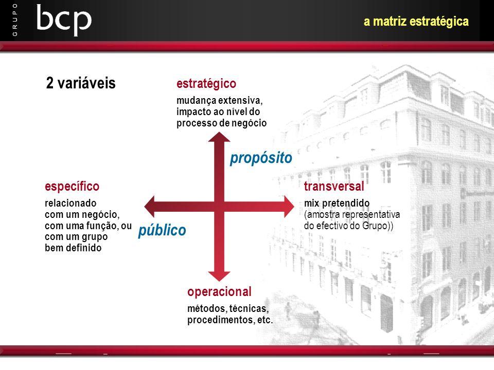 2 variáveis propósito público a matriz estratégica estratégico