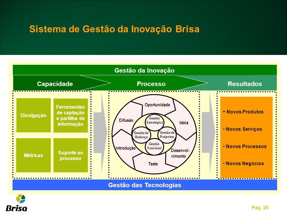 Sistema de Gestão da Inovação Brisa