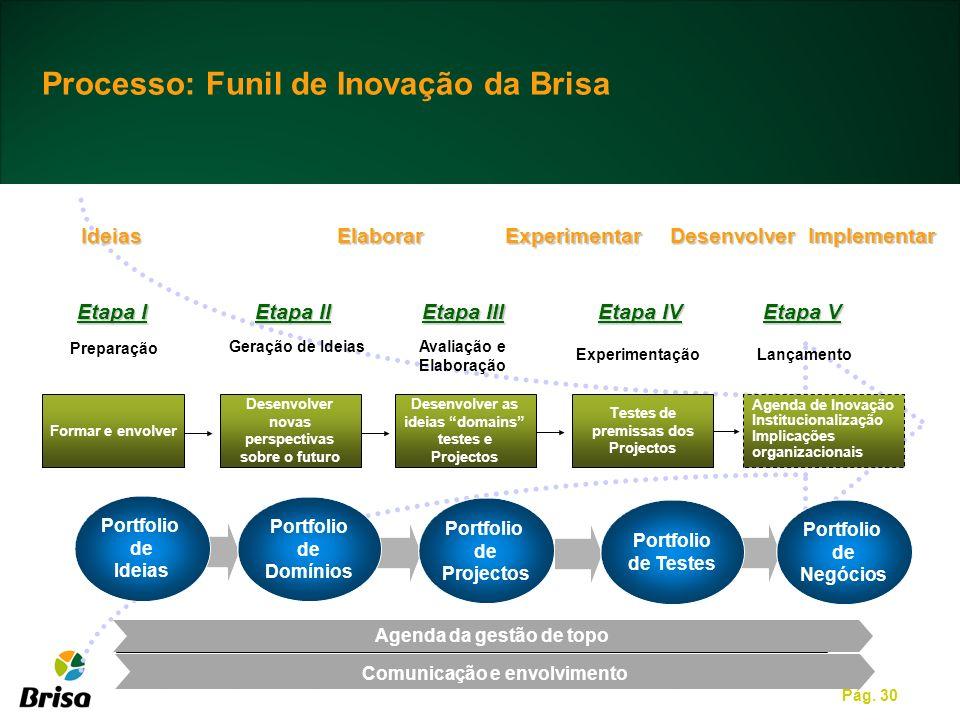 Processo: Funil de Inovação da Brisa