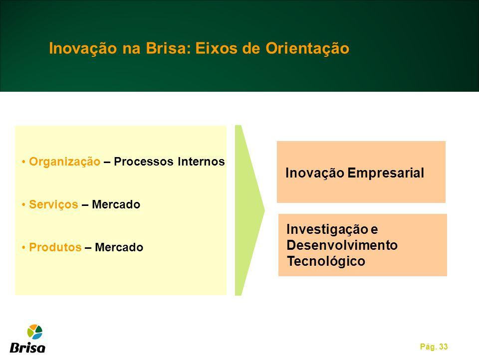 Inovação na Brisa: Eixos de Orientação