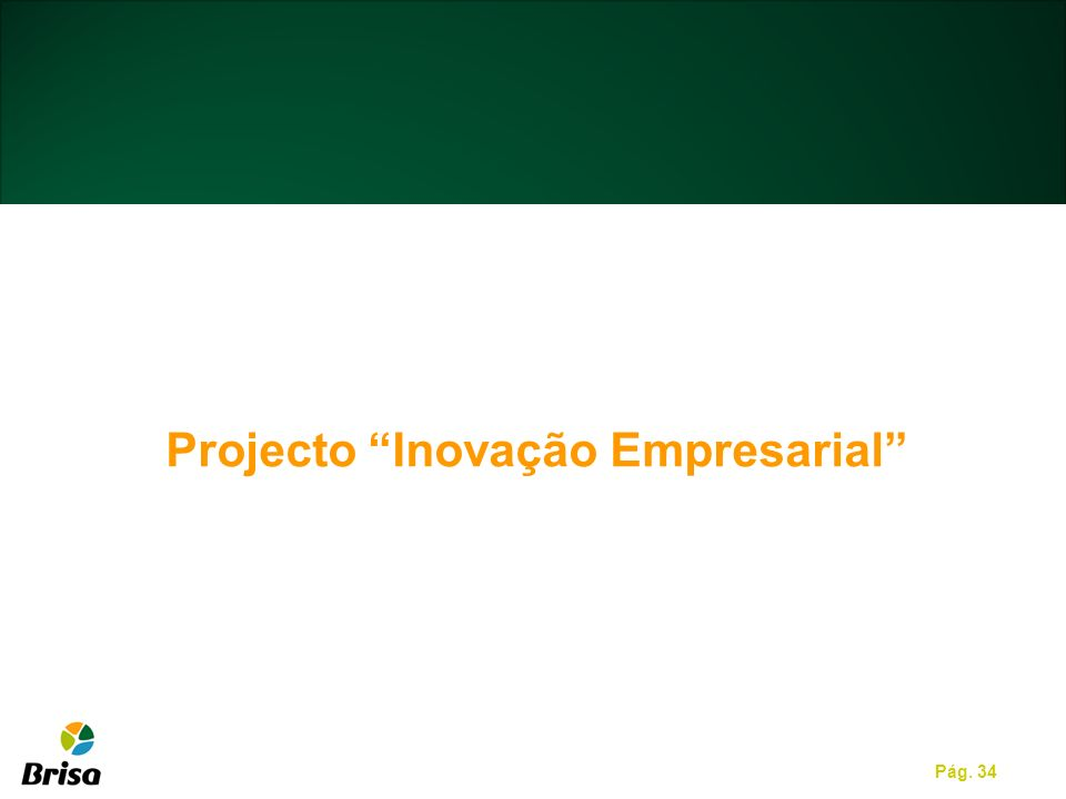 Projecto Inovação Empresarial