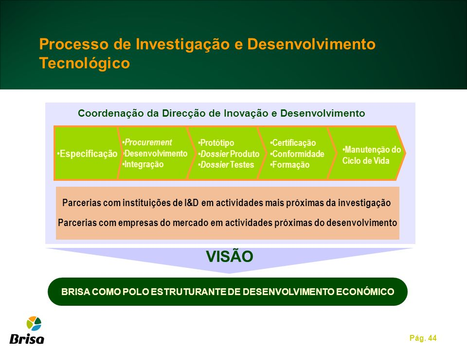 BRISA COMO POLO ESTRUTURANTE DE DESENVOLVIMENTO ECONÓMICO