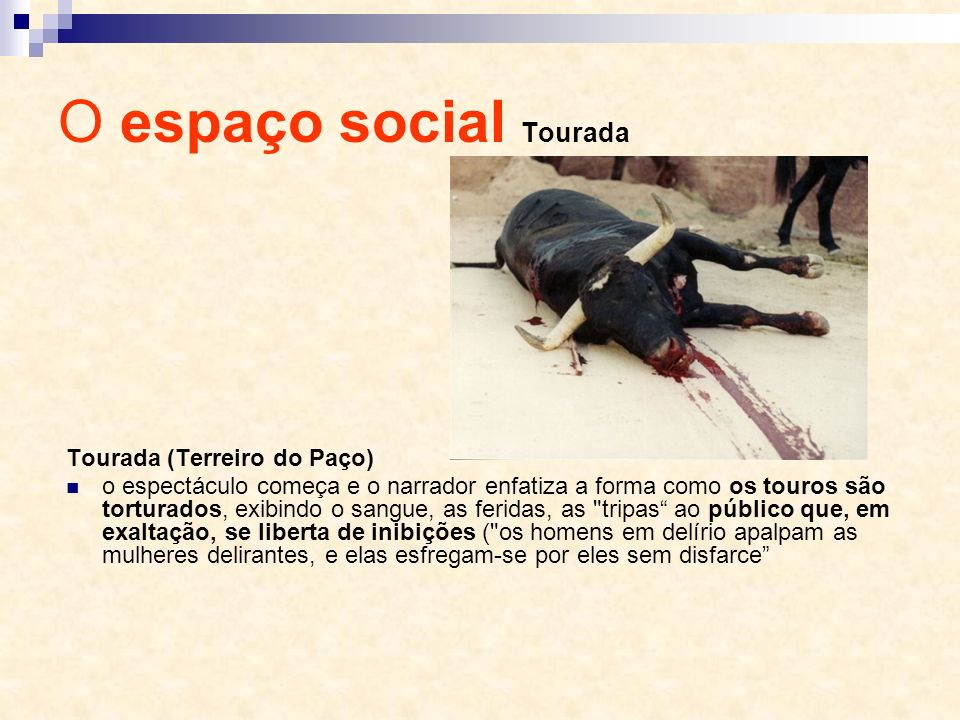 O espaço social Tourada