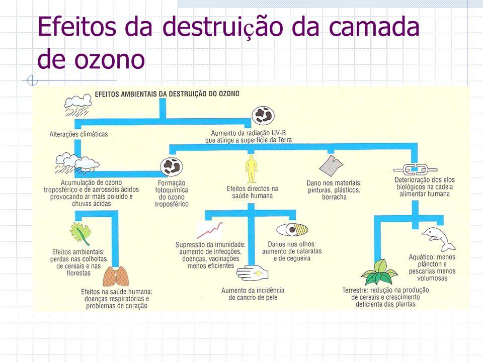 Efeitos da destruição da camada de ozono