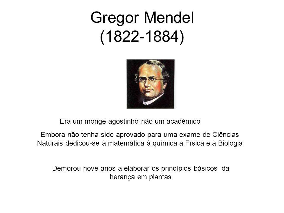 Gregor Mendel (1822-1884) Era um monge agostinho não um académico