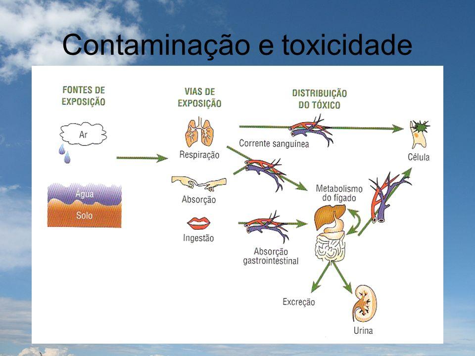 Contaminação e toxicidade