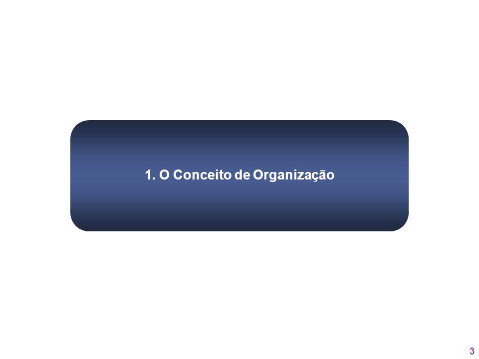 1. O Conceito de Organização