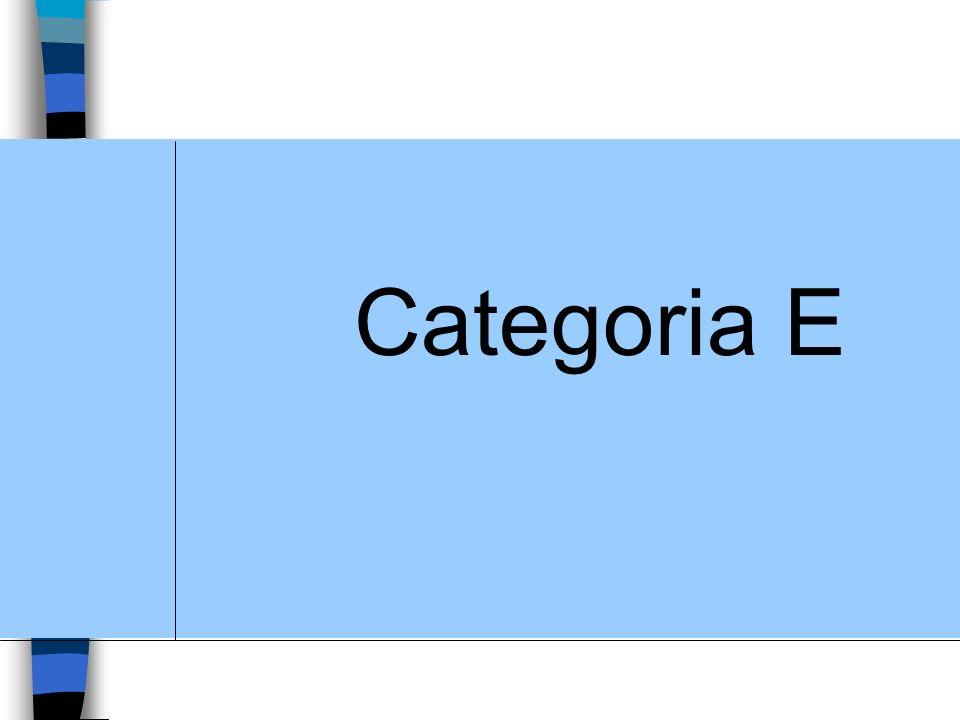Categoria E