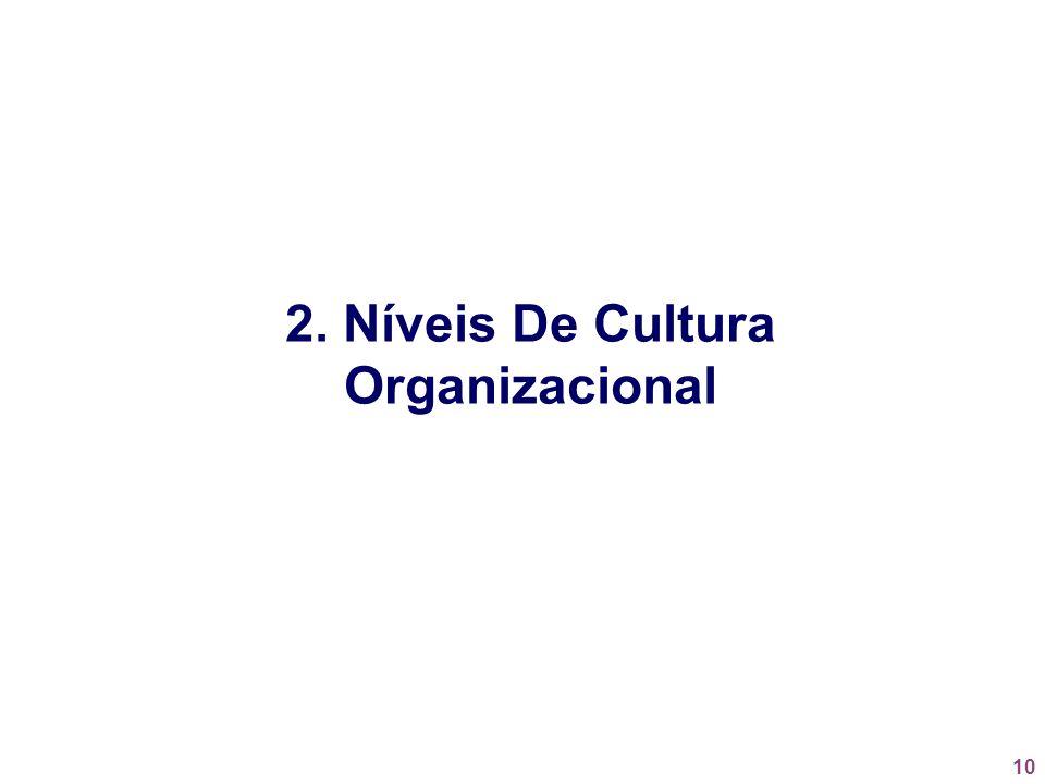 2. Níveis De Cultura Organizacional