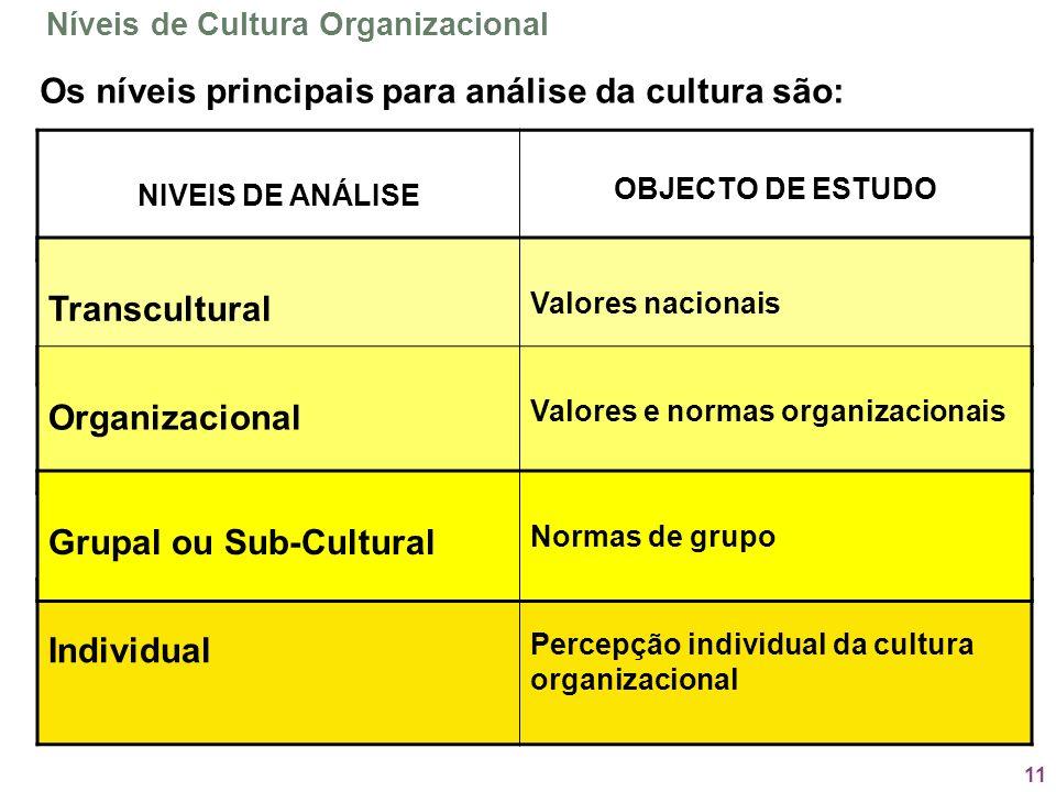 Os níveis principais para análise da cultura são: