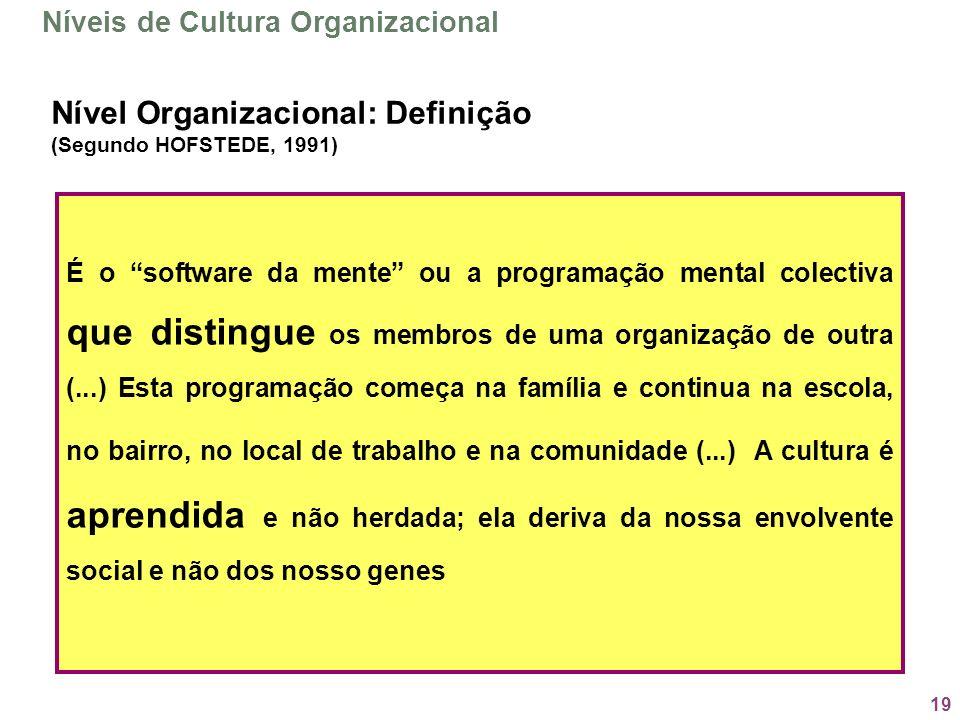 Nível Organizacional: Definição (Segundo HOFSTEDE, 1991)