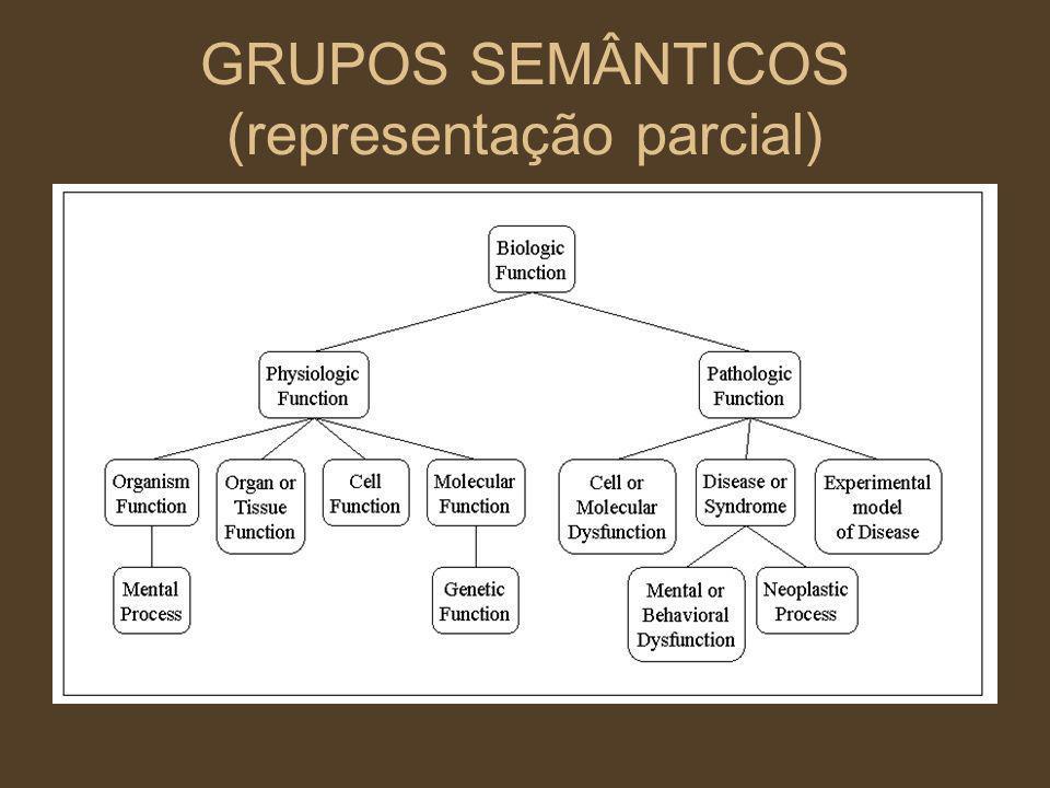 GRUPOS SEMÂNTICOS (representação parcial)