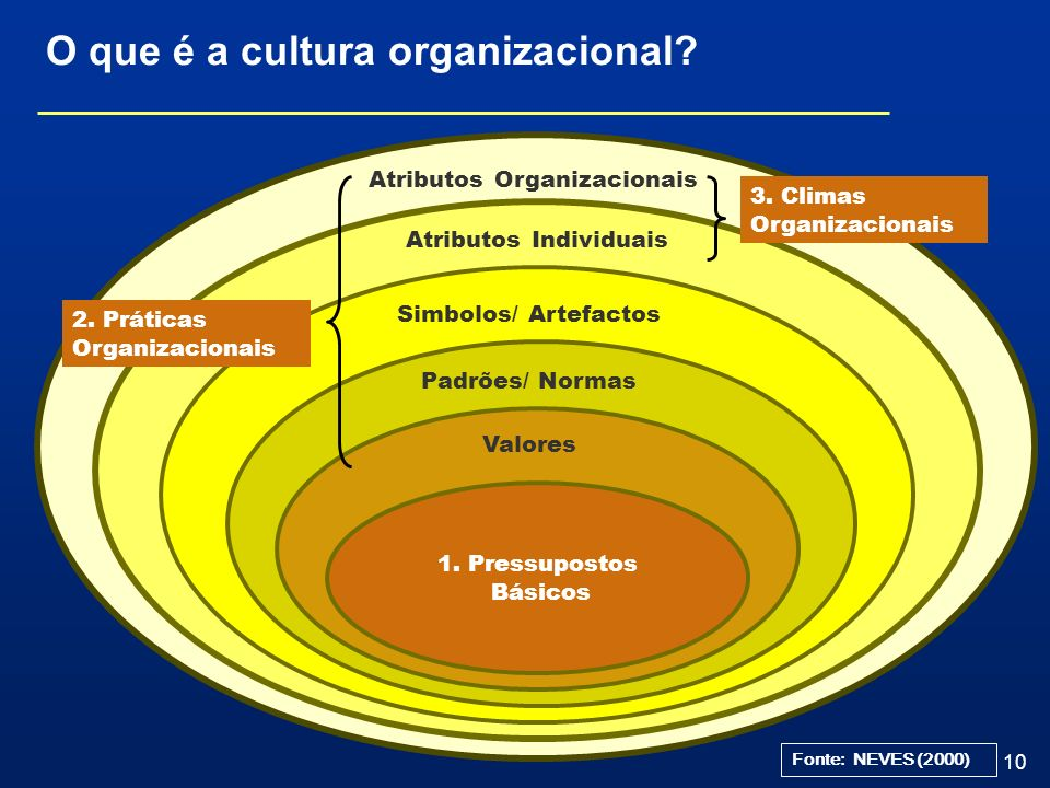 O que é a cultura organizacional