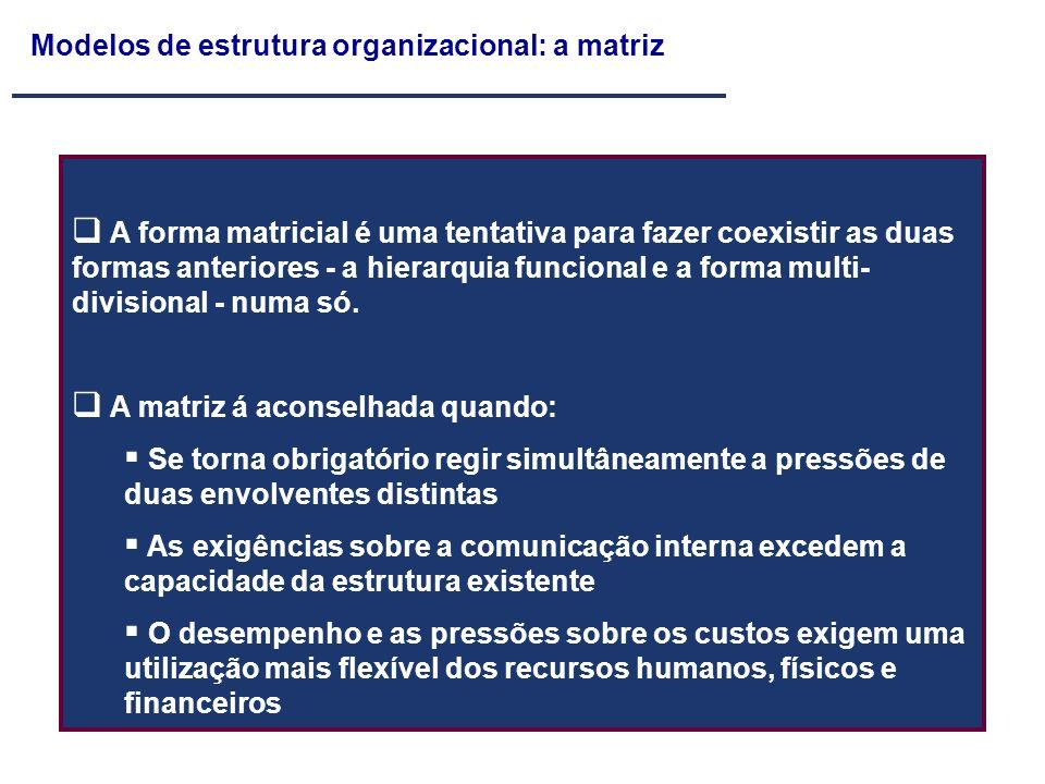 Modelos de estrutura organizacional: a matriz