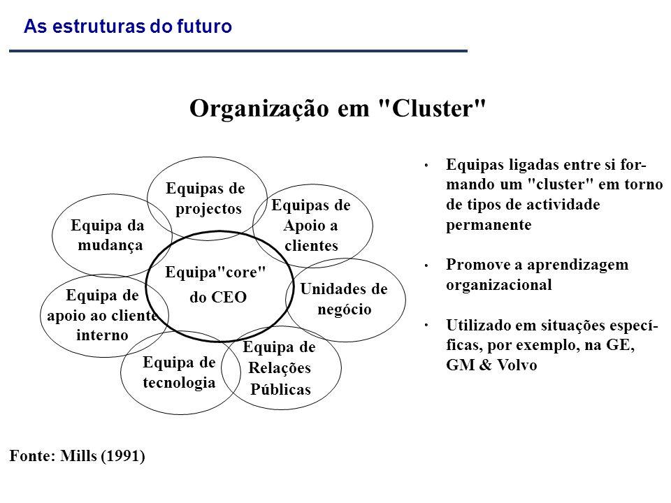 Organização em Cluster