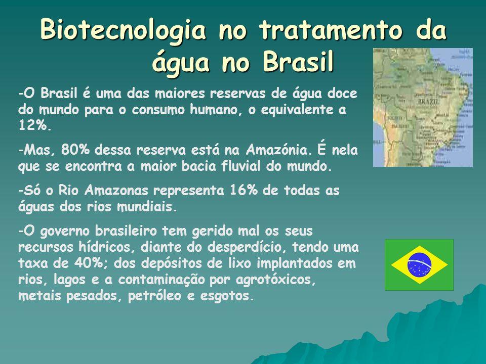 Biotecnologia no tratamento da água no Brasil