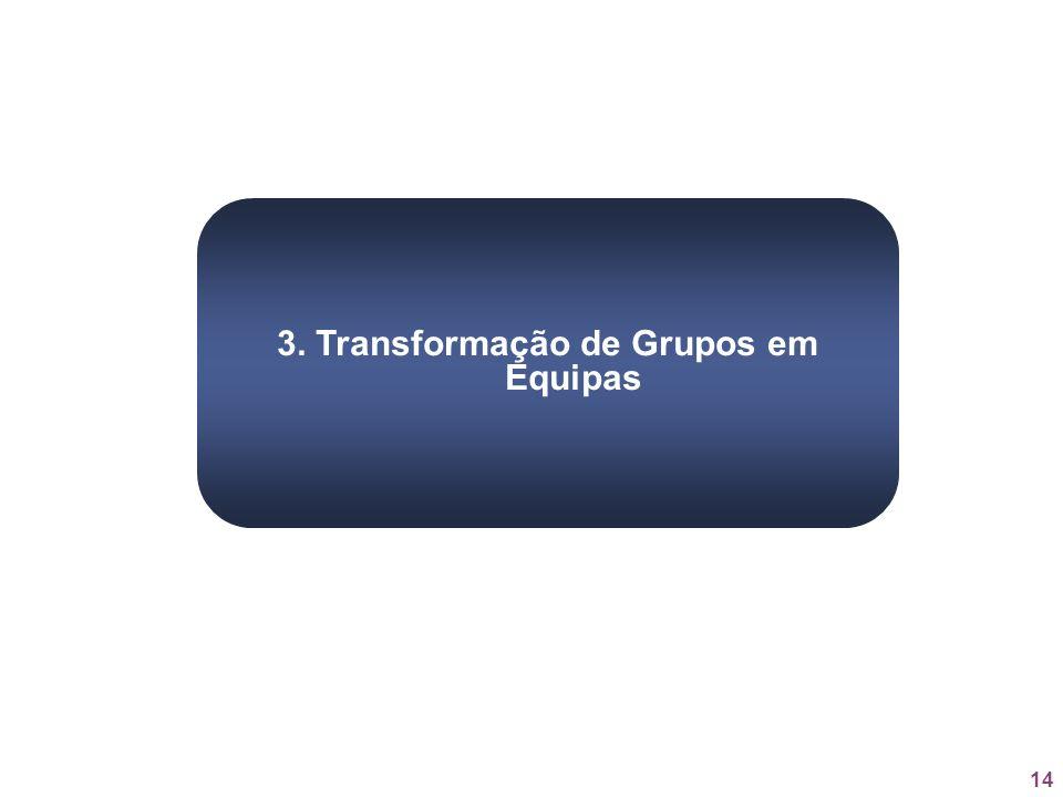 3. Transformação de Grupos em Equipas