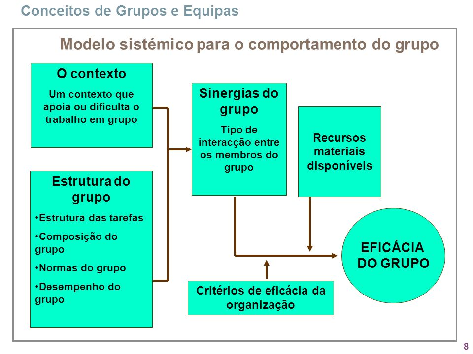 Modelo sistémico para o comportamento do grupo