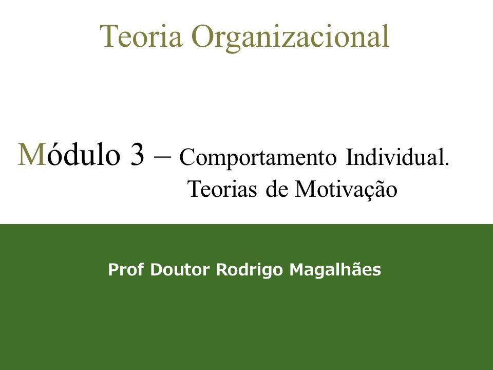 Prof Doutor Rodrigo Magalhães