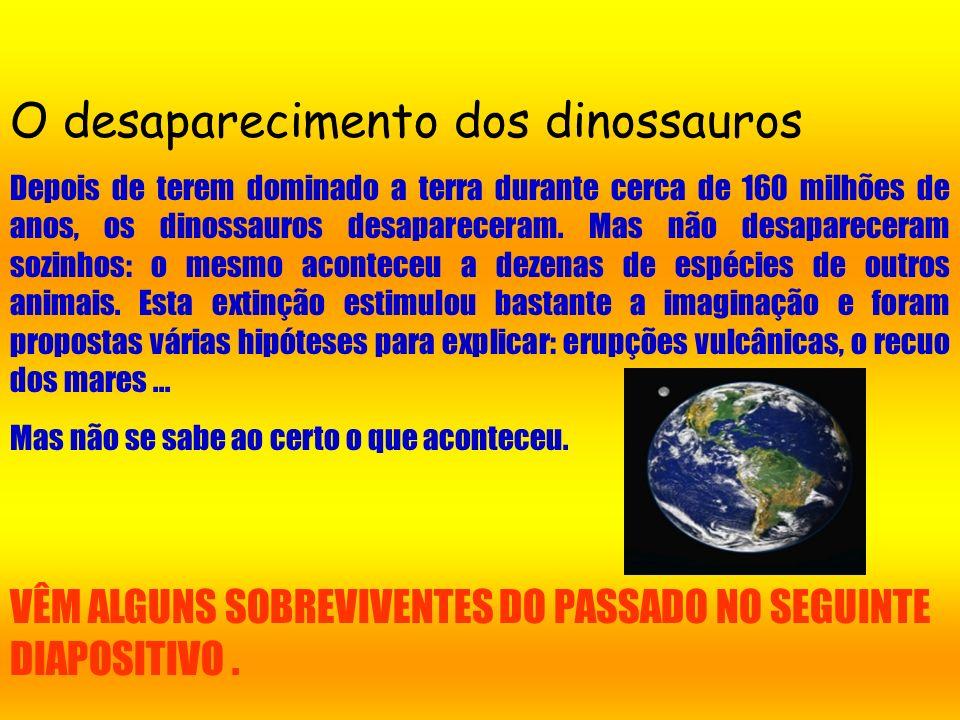 O desaparecimento dos dinossauros