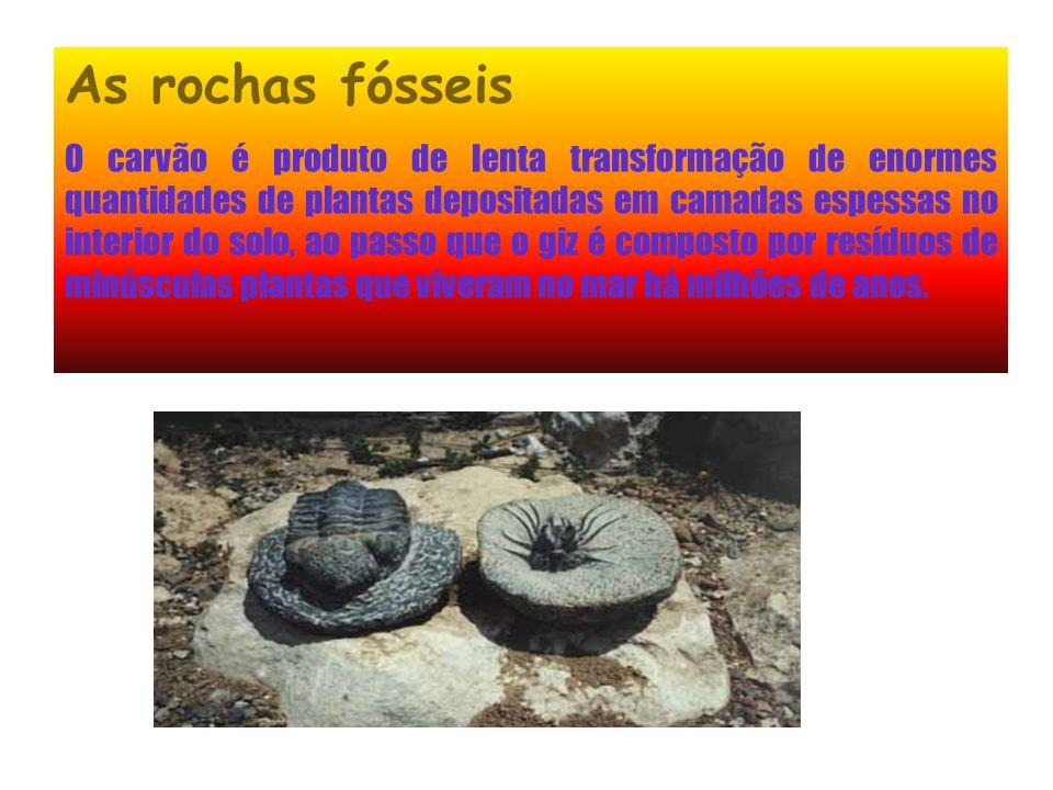 As rochas fósseis