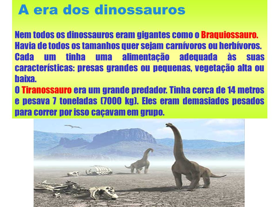 A era dos dinossaurosNem todos os dinossauros eram gigantes como o Braquiossauro. Havia de todos os tamanhos quer sejam carnívoros ou herbívoros.