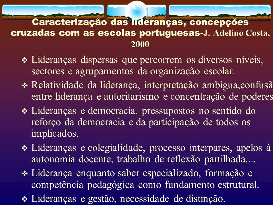 Lideranças e gestão, necessidade de distinção.