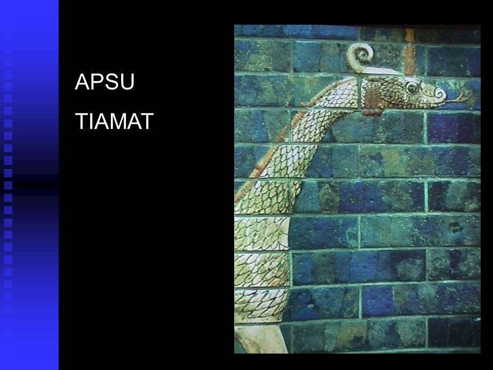 APSU TIAMAT