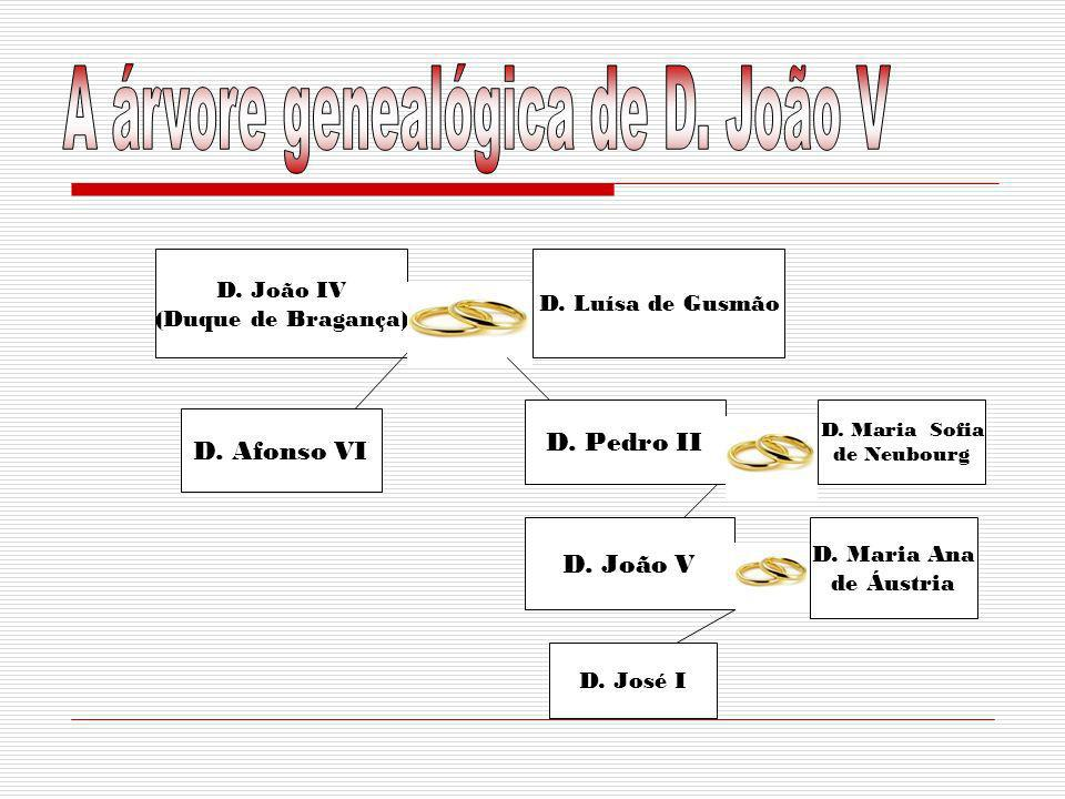 A árvore genealógica de D. João V