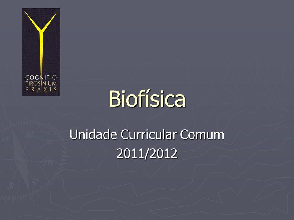 Unidade Curricular Comum 2011/2012