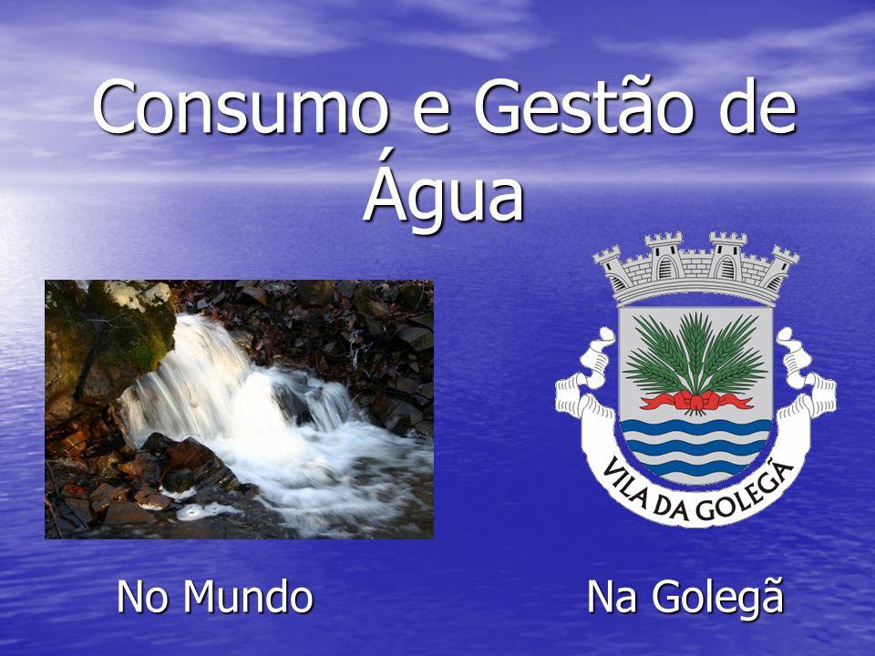 Consumo e Gestão de Água