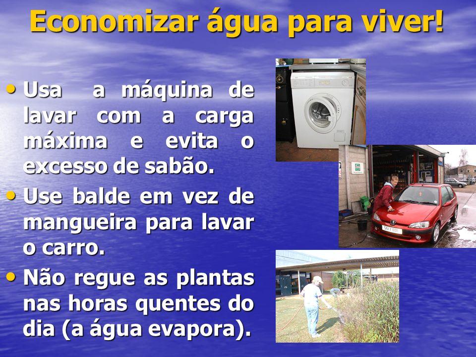 Economizar água para viver!