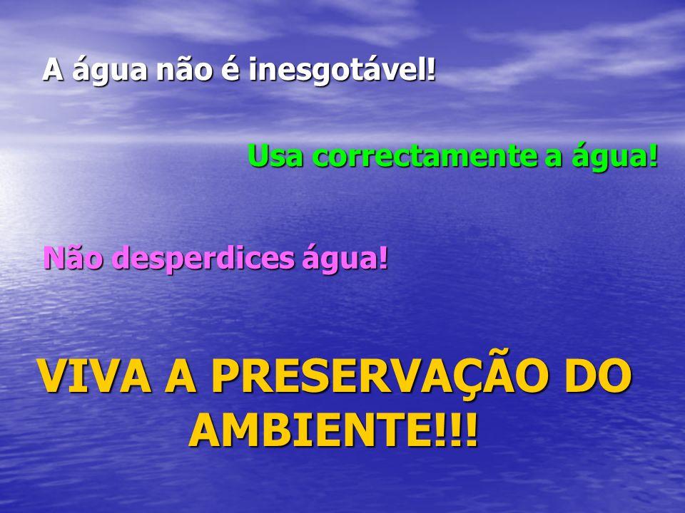 VIVA A PRESERVAÇÃO DO AMBIENTE!!!