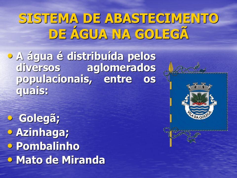 SISTEMA DE ABASTECIMENTO DE ÁGUA NA GOLEGÃ