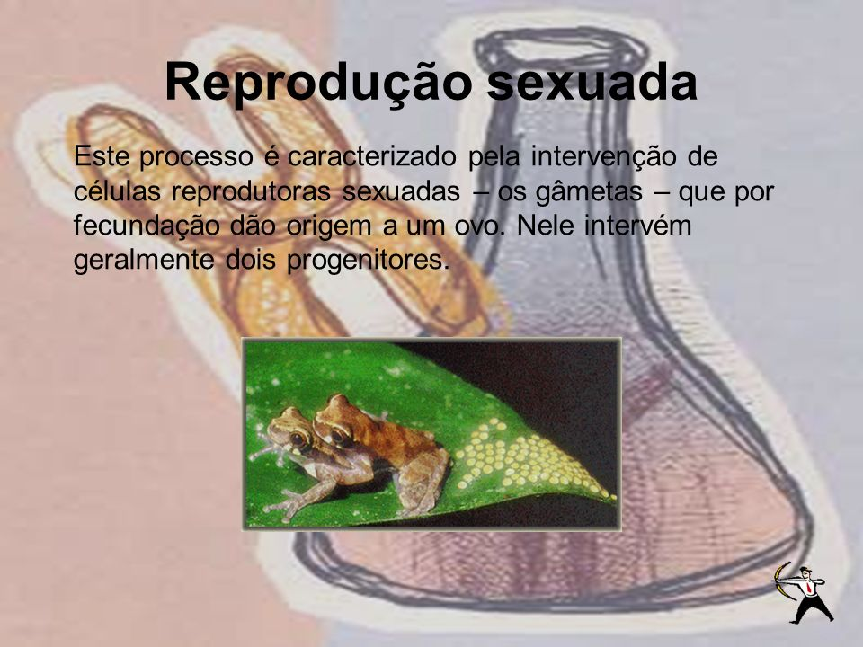 Reprodução sexuada