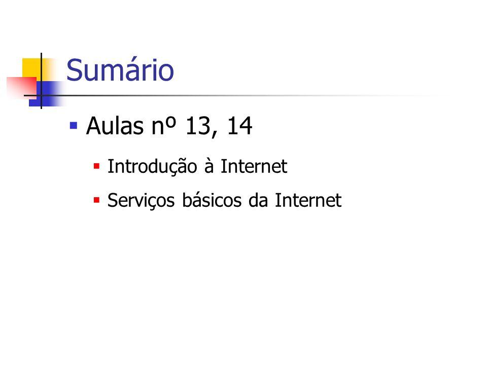 Sumário Aulas nº 13, 14 Introdução à Internet