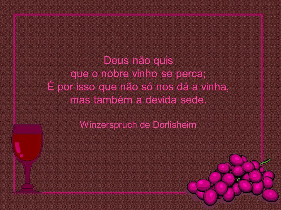 Deus não quis que o nobre vinho se perca; É por isso que não só nos dá a vinha, mas também a devida sede.