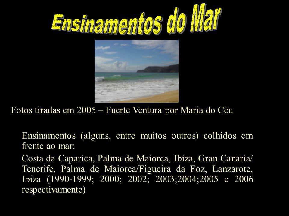 Ensinamentos do Mar Fotos tiradas em 2005 – Fuerte Ventura por Maria do Céu. Ensinamentos (alguns, entre muitos outros) colhidos em frente ao mar: