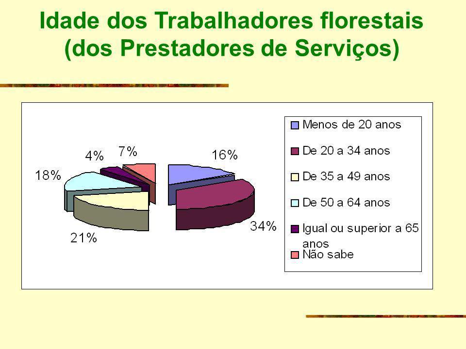 Idade dos Trabalhadores florestais (dos Prestadores de Serviços)