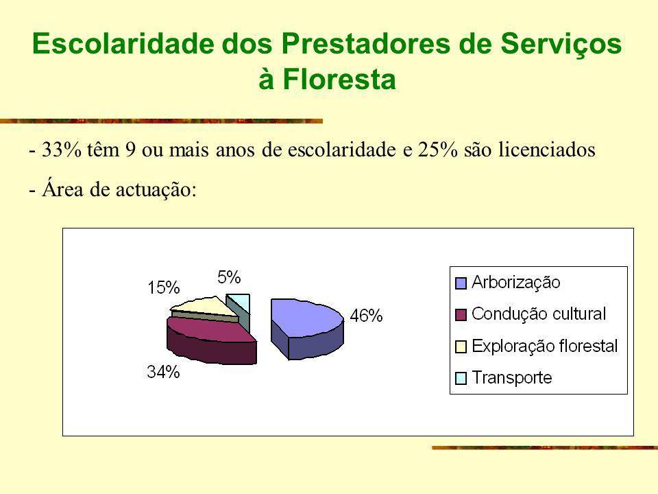 Escolaridade dos Prestadores de Serviços à Floresta