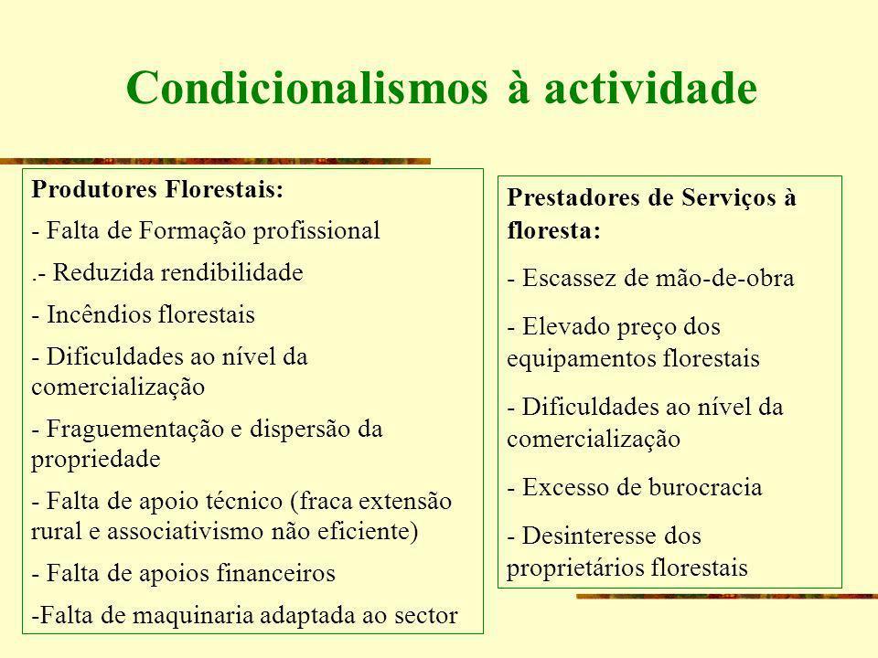 Condicionalismos à actividade