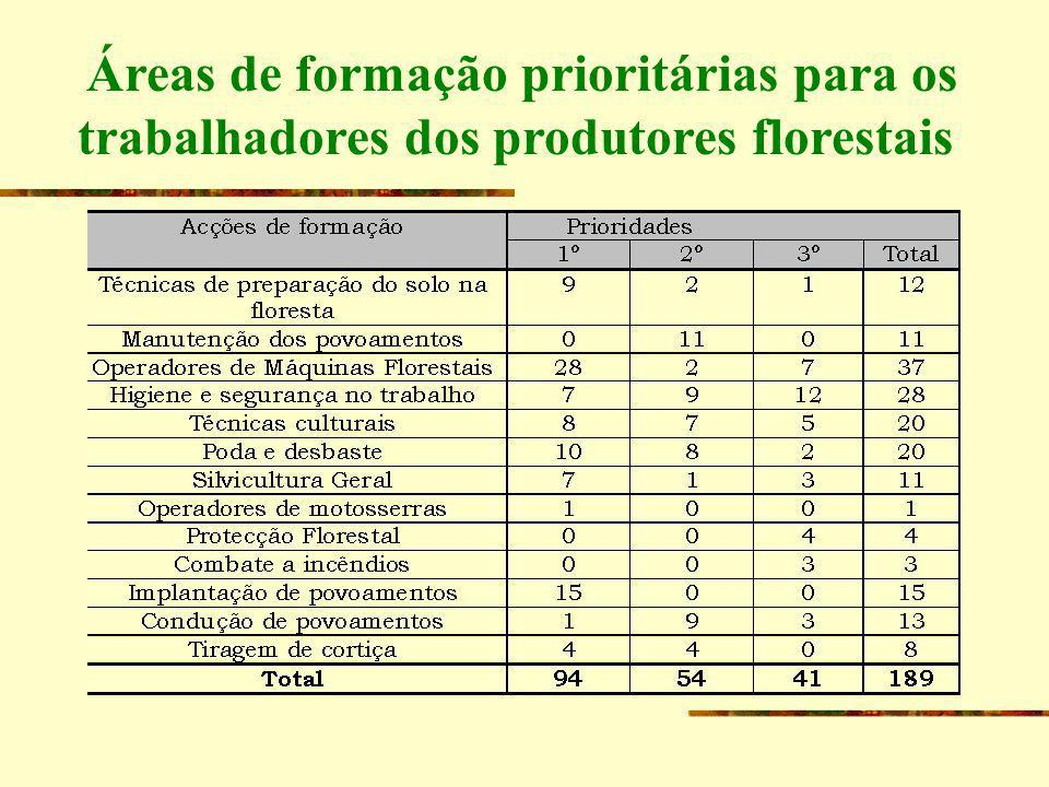 Áreas de formação prioritárias para os trabalhadores dos produtores florestais