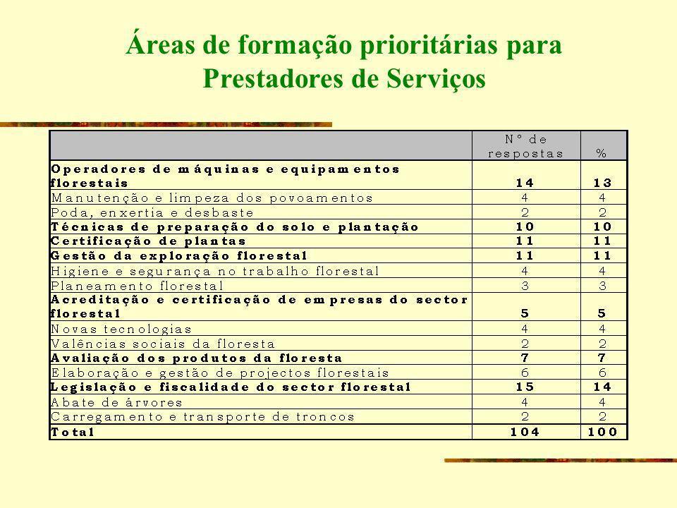 Áreas de formação prioritárias para Prestadores de Serviços