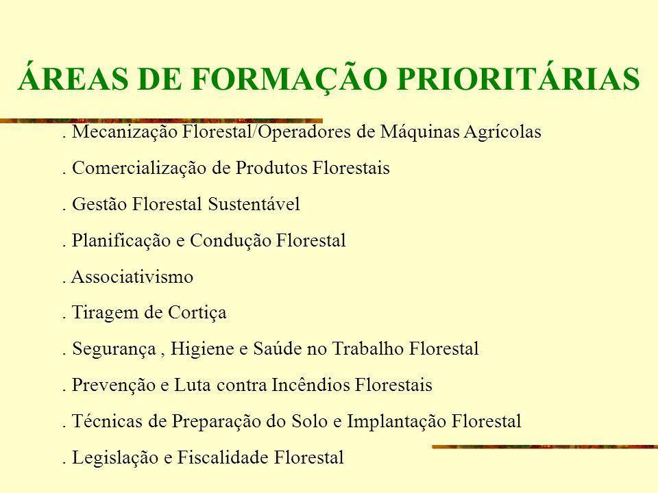 ÁREAS DE FORMAÇÃO PRIORITÁRIAS