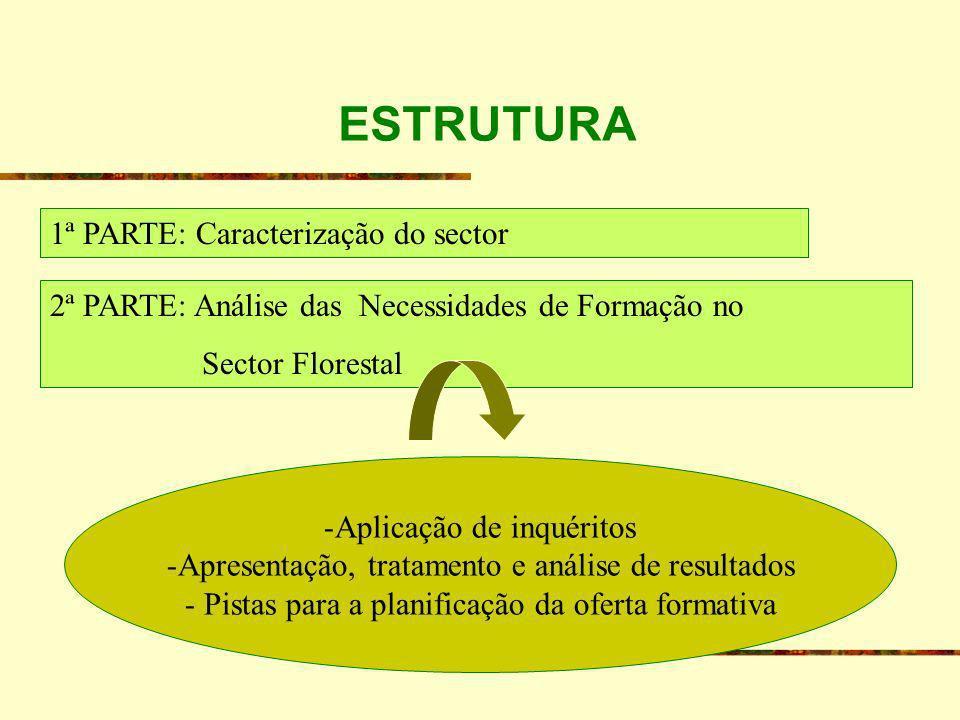 ESTRUTURA 1ª PARTE: Caracterização do sector