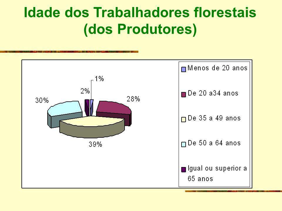 Idade dos Trabalhadores florestais (dos Produtores)