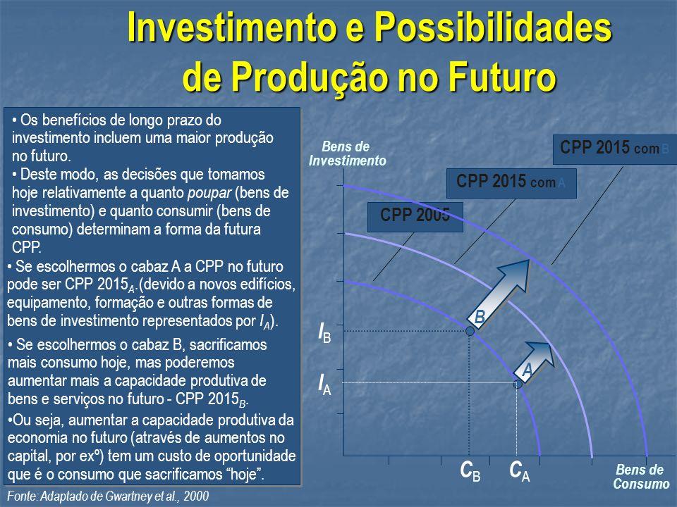 Investimento e Possibilidades de Produção no Futuro